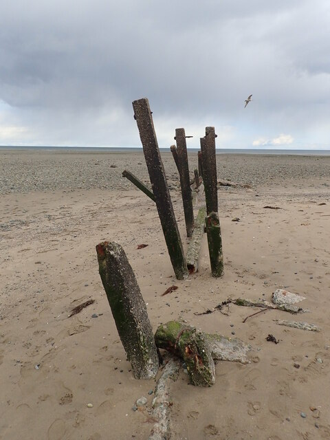 The remnants of a groyne in the Shimna Estuary