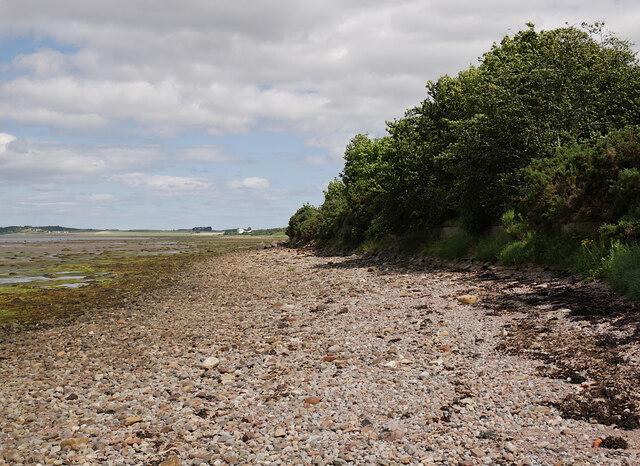 Shoreline, by Seafield