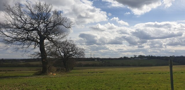 View from Williams Wood, Trent Park