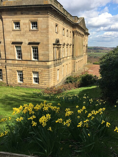 Spring colour at Wentworth Castle