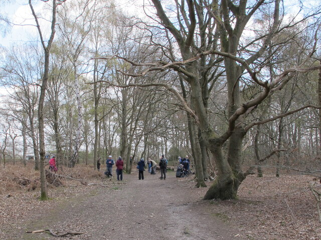 Rambling group in Egypt Woods