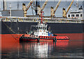 J3576 : Tug 'Masterman' at Belfast by Rossographer
