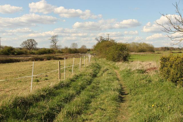 Track to Low Fields