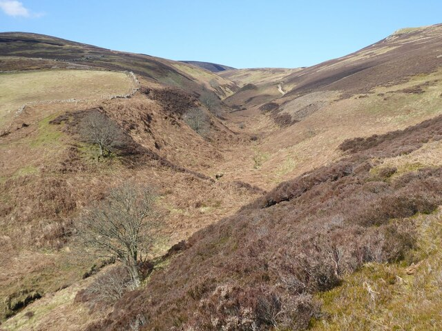 Looking up the valley of the Hawsen Burn
