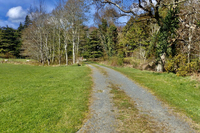 Lane linking camping ground with the Tollymore Entrance Avenue