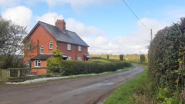 Weston Beggard Lane