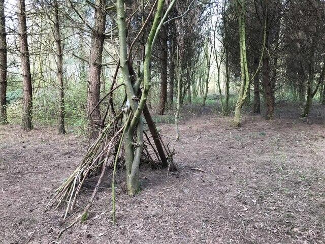 Another bushcraft shelter