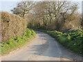TG2733 : Bradfield Road a Quiet Lane by David Pashley