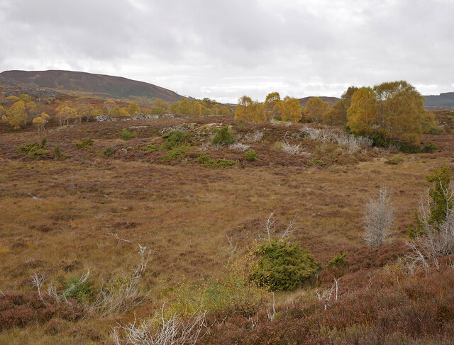 Moorland, by Cnoc na Moine
