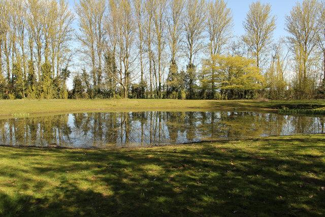 Middle Farm pond