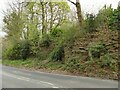 SE2737 : Rock cutting, Weetwood Lane by Stephen Craven