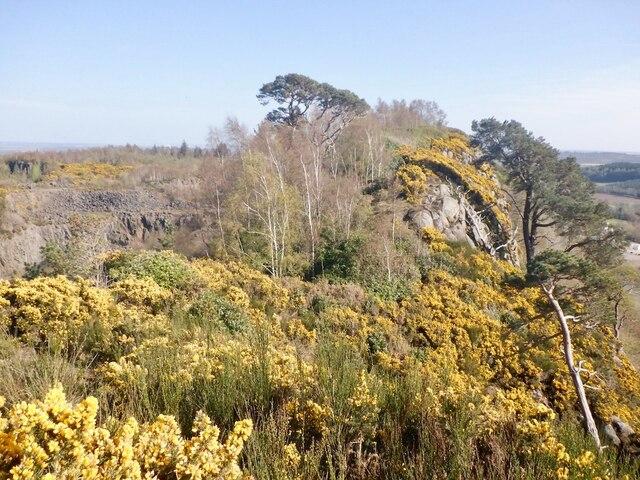 Remnant ridge, Murrayshall Quarry