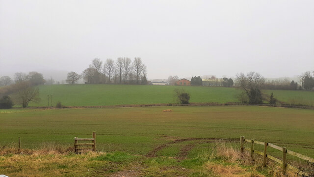 Fields to the south of Mitcheldean