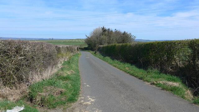Minor road near Maintree