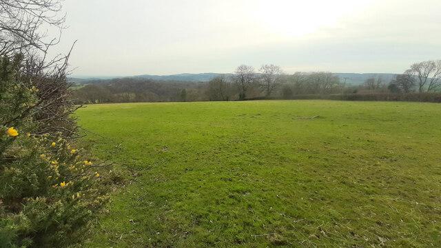 Field off Yartleton Lane