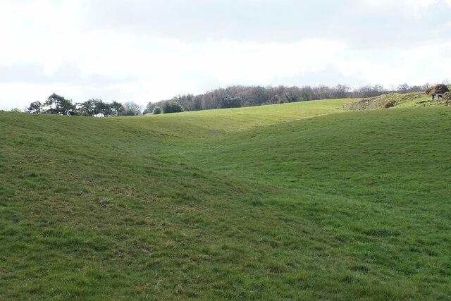 Undulating hillside above Alton