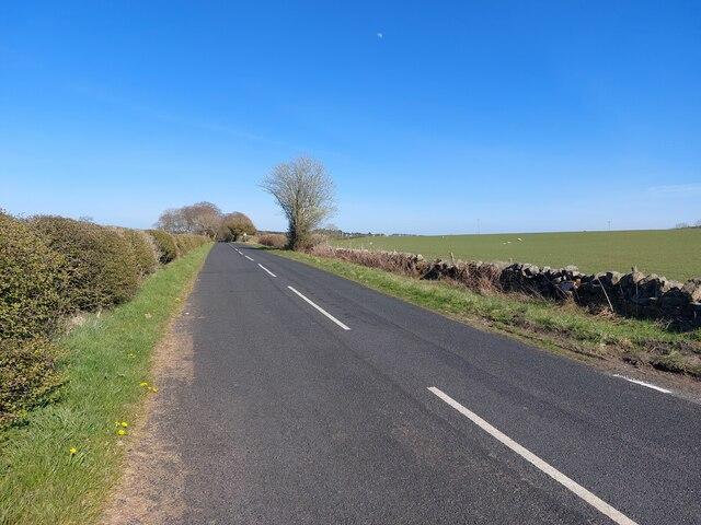 Minor road north of Belsay Barns