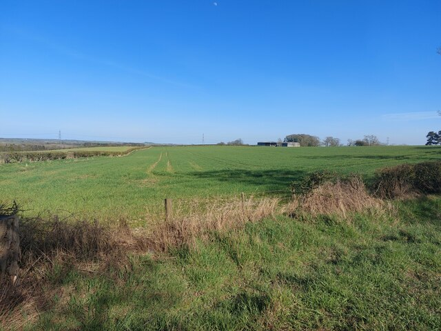Arable field at Hedchester Law