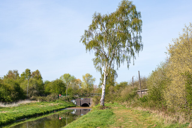 A spur of the Main Drain and some ruins, Swanpool, Lincoln