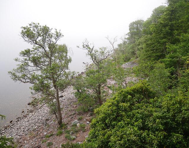 Shore of Loch Ness