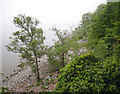 NH5330 : Shore of Loch Ness by Craig Wallace