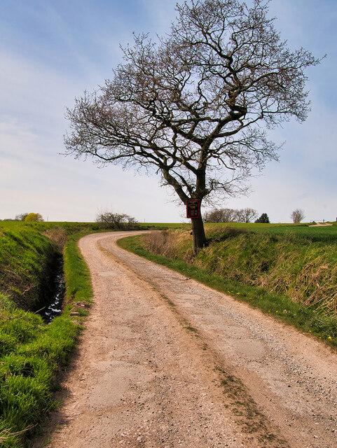 Track towards Talbot House
