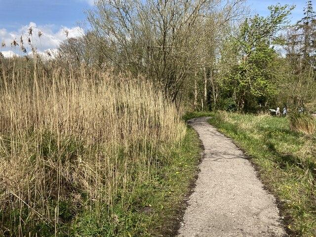 Pathway near Old Castle Archdale by Kenneth  Allen