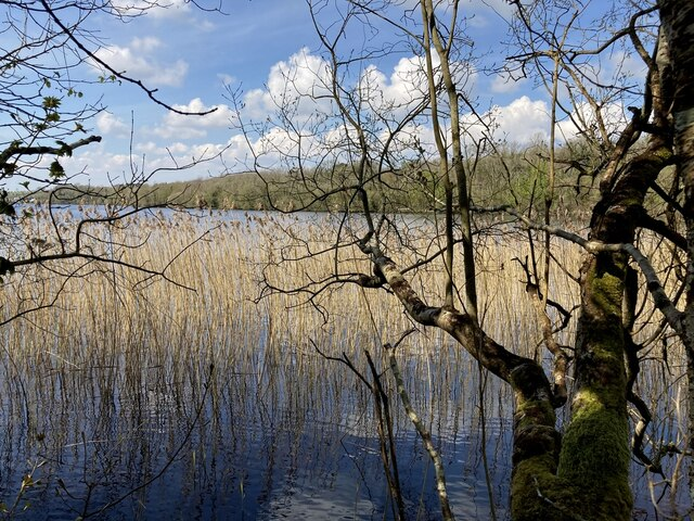 Still waters, Lough Erne