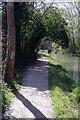 SP9213 : Gamnel Bridge, Wendover Arm by Stephen McKay