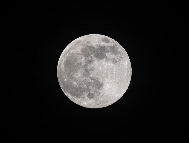 Pink Moon on 26 April 2021 in London N14