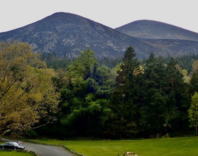 Fire damaged slopes of Slieve Donard and Thomas's Mountain