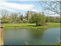 TM2682 : Mendham All Saints from across the River Waveney by Adrian S Pye