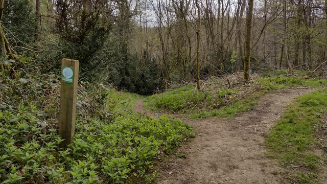 Bridleway off the A44