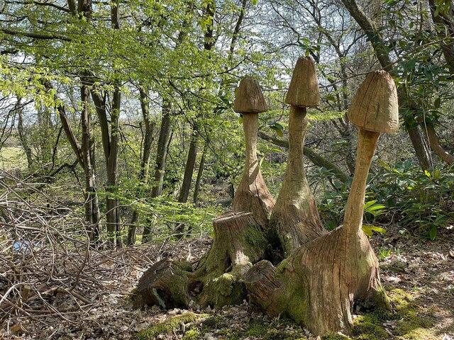 Mushroom sculpture at Owl House Gardens