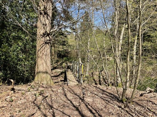 Footbridge in Brown's Wood