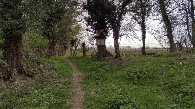 Path to Woodleys Cottages