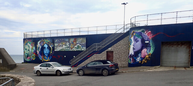 Recently painted murals on the north wall of Newcastle's Foul Water Treatment Centre