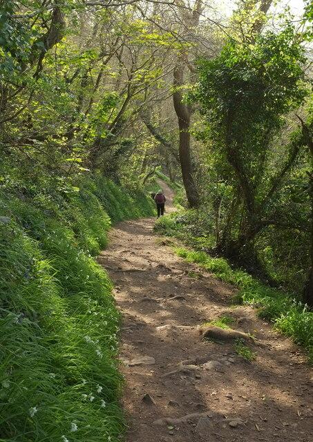Bishop's Walk