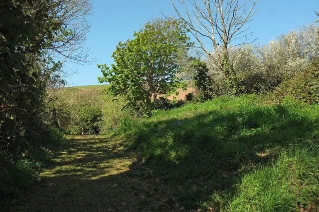 Track near Brownstone Battery