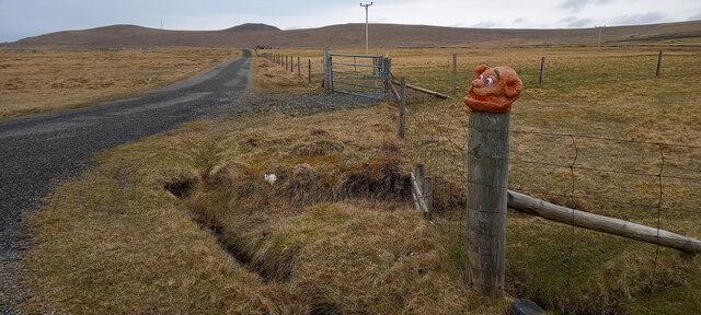 Fozzy bear on a post, Stove, Haroldswick