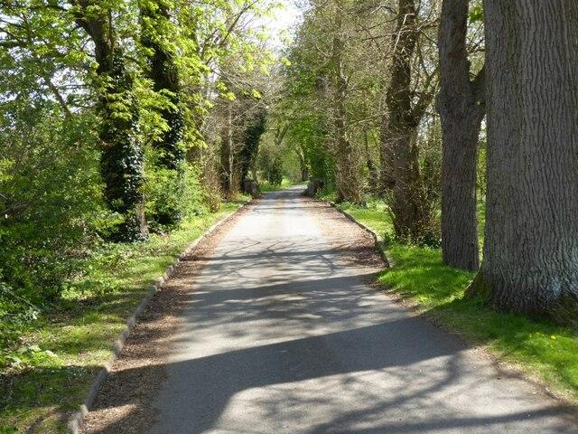Drive to Southwick Park