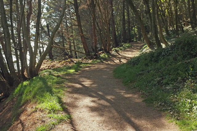 Coast path in The Warren