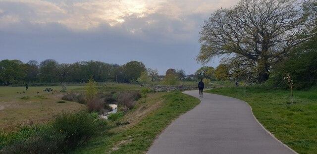 Firs Farm Wetlands, London N13