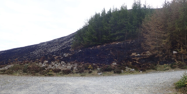 Fire ravaged area at the entrance to Thomas's Mountain Quarry