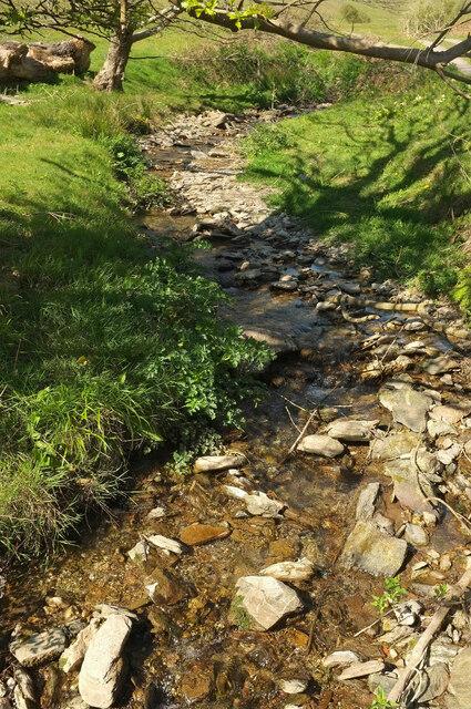 Stream above Mill Bay Cove