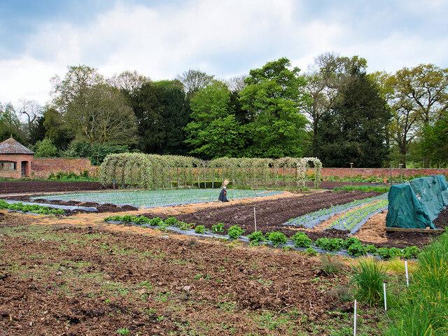 Tatton Park Kitchen Garden