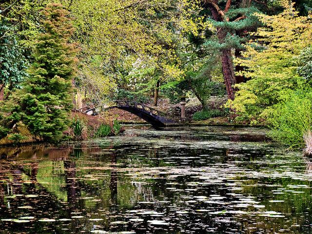 Tatton Park Japanese Garden