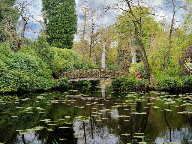Golden Brook Pits, The Japanese Garden at Tatton Park