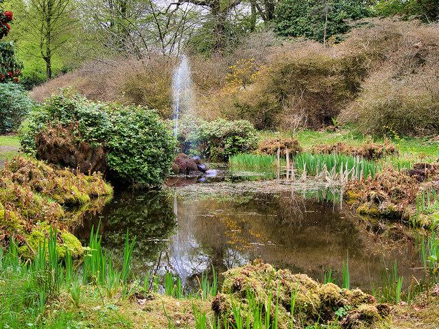 The Leech Pool, Tatton Park