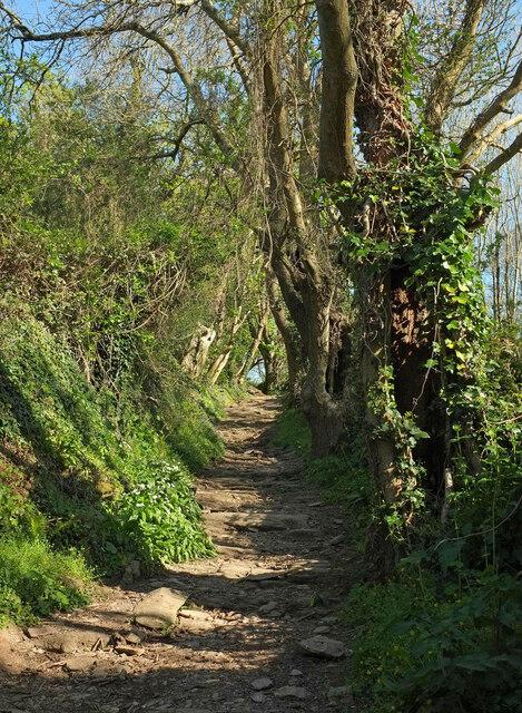 Footpath to Brownstone
